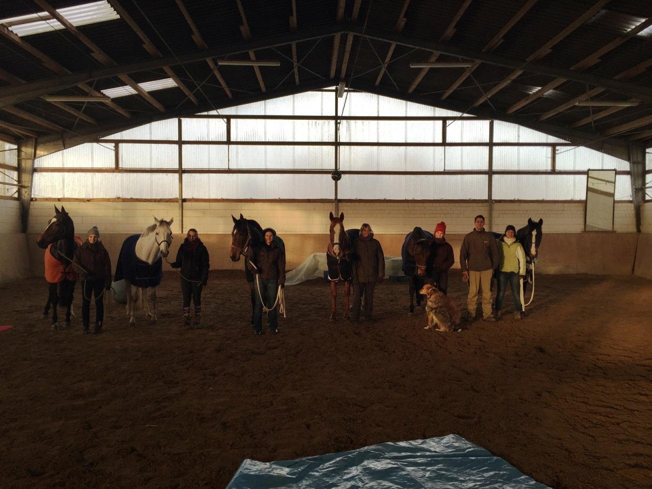 Gelungener Horsemanshipkurs mit Denny Nellessen – viel Spaß und mit gutem Lerneffekt